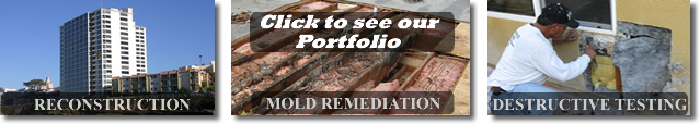AVBuilder - Reconstruction  Destructive Testing  Mold Remediation  and More